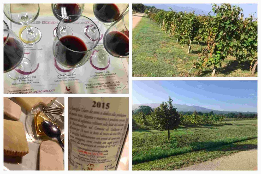 La Starza Telaro, volcanic wines