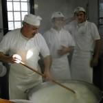 Torricelle, la lavorazione della mozzarella di bufala