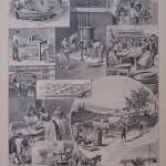 La fabbrica dei Maccheroni
