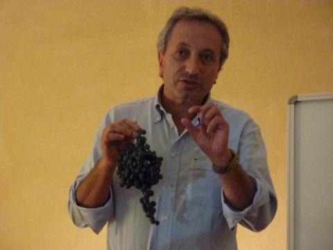Il professore Luigi Moio sul Casavecchia durante la verticale