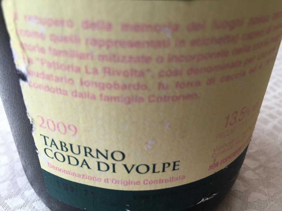 Sannio Coda di Volpe 2009 Fattoria La Rivolta
