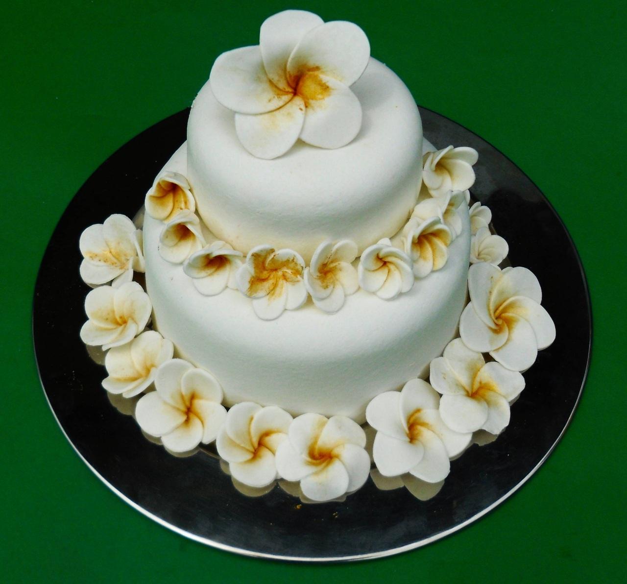 Torta Cake Design Dentista : Il cake design di Claudia Deb. Il Frangipani in tre mosse ...