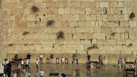 Uno sguardo verso il Muro Occidentale, costruito dul monte Moriah, detto anche Monte del Tempio (foto di Sara Marte)