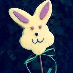 Coniglietto Pops