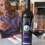 Luigi Tecce, il vignaiolo poeta, incanta tutti con il suo vino