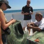 Franco Ricci e Carlo Borromeo raccontano le caratteristiche dei pesci catturati nella rete di posta