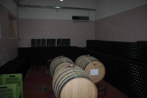 Fosso degli Angeli - Il riposo del vino