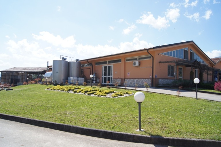 Ciorlano, Azienda Agricola Ponte Reale: mozzarella di bufala ...
