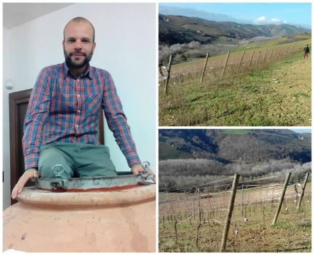 Francesco Cirelli e scorci della vigna