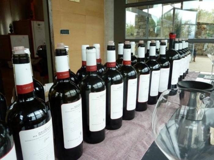 Podere San Giuseppe, i vini degustati