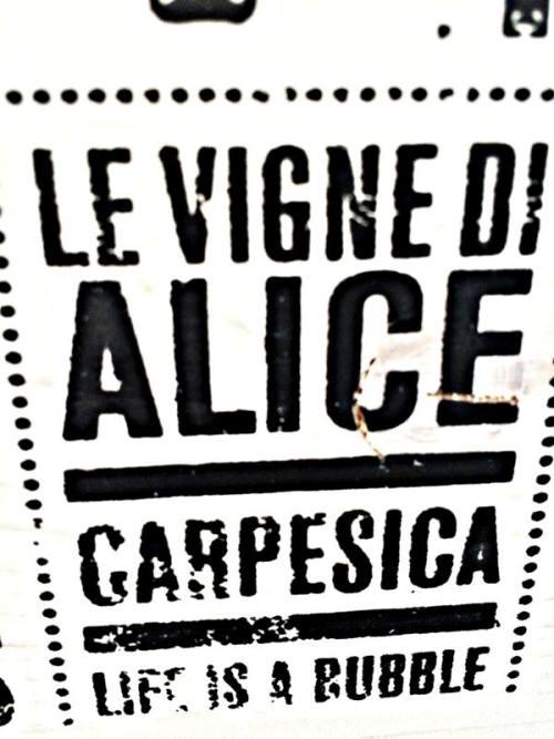 Le Vigne di Alice