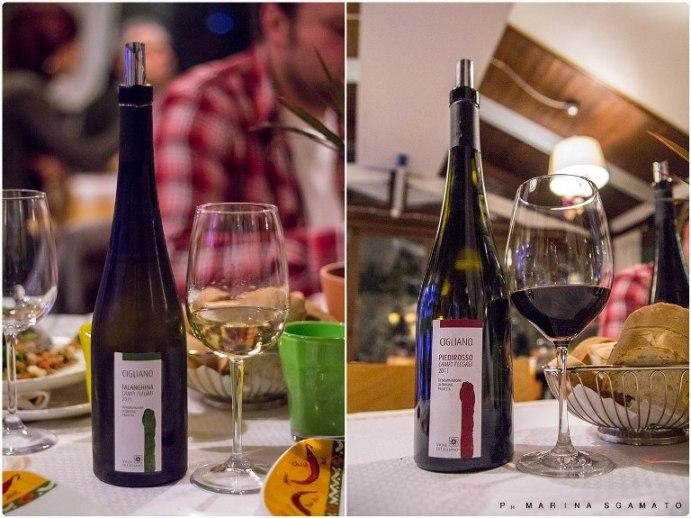 Falanghina 2011 e Piedirosso 2011 di Cantine Vigne di Cigliano