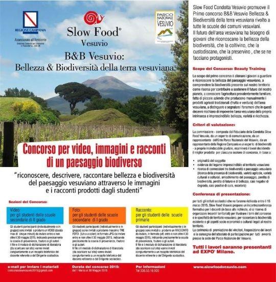 rimo Concorso B&B Vesuvio: Bellezza e Biodiversità della Terra Vesuviana