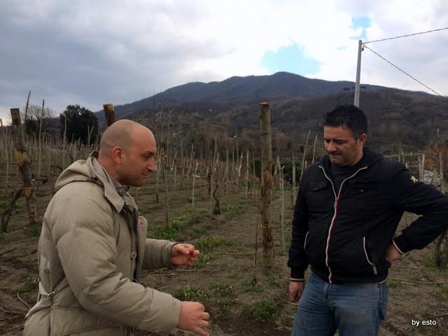 Vincenzo Di Fiore Pizzeria Bella Napoli tra i vigneti di Catalanesca del Monte Somma con Ciro Giordano Cantine Olivella