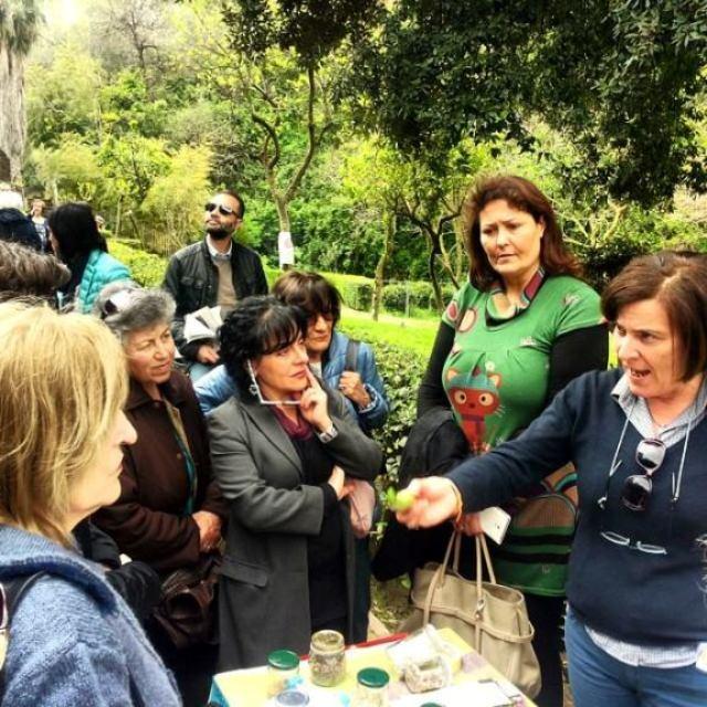 la banca del germoplasma delle varietà vegetali tipiche della Campania: impariamo a riconoscere i semi