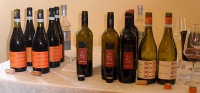 le bottiglie di Bardolino Le Fraghe in degustazione