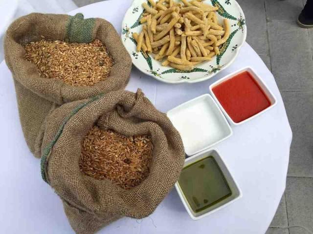 Gli elementi del piatto: grano, olio, basilico, pomodoro e latte