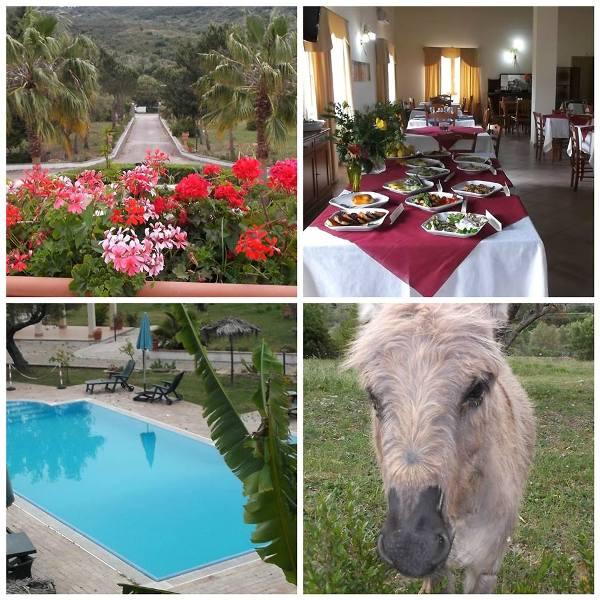 Elios Country Village, il viale di ingresso, la sala, la piscina e un asinello