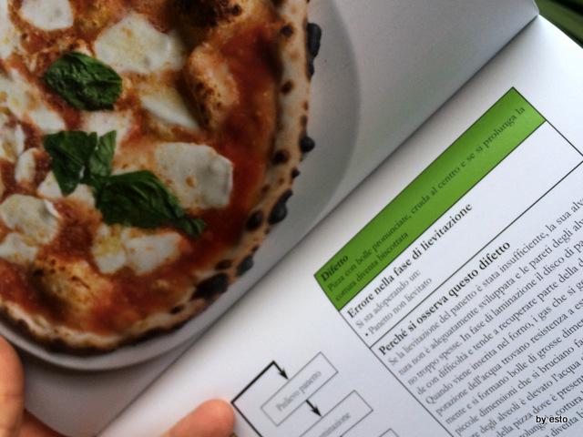La Pizza Napoletana il libro di Enzo Coccia