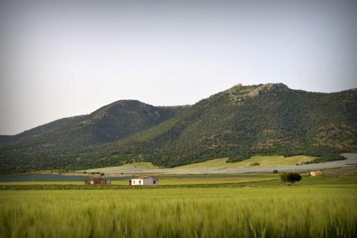 La campagna  Pedegarganica a nord della Puglia