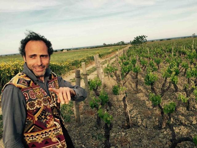 Sergio Arcuri in vigna
