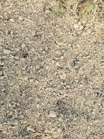 Sergio Arcuri, il terreno argilloso