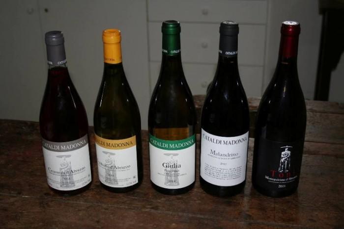 i vini di Cataldi Madonna