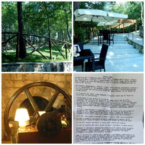 Il Vecchio Mulino, il boschetto di querce, all'arrivo, i tavoli lungo i terrazzini di accesso, il vecchio meccanismo del mulino e il regio decreto per la costruzione del mulino