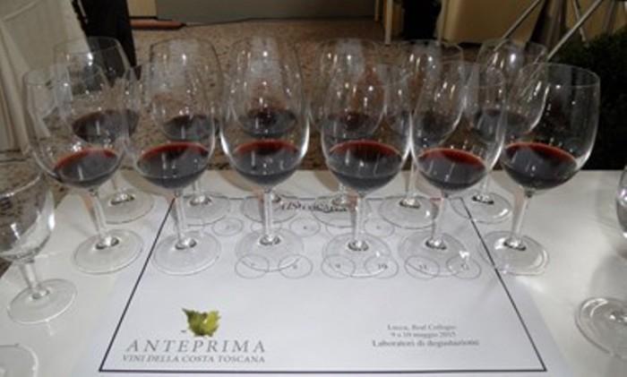 La grande verticale della Costa della Tenuta di Valgiano, i vini