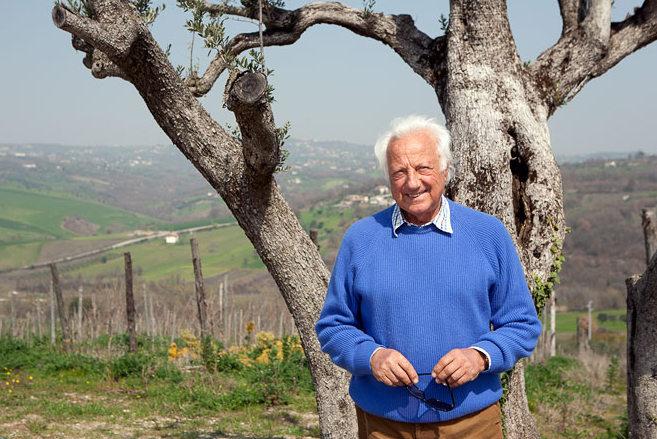 Lorenzo Fonzone