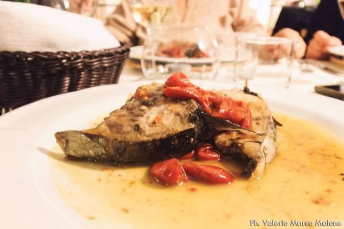 Trancio di Palamita, in salsa di pomodorino Cannellino Flegreo