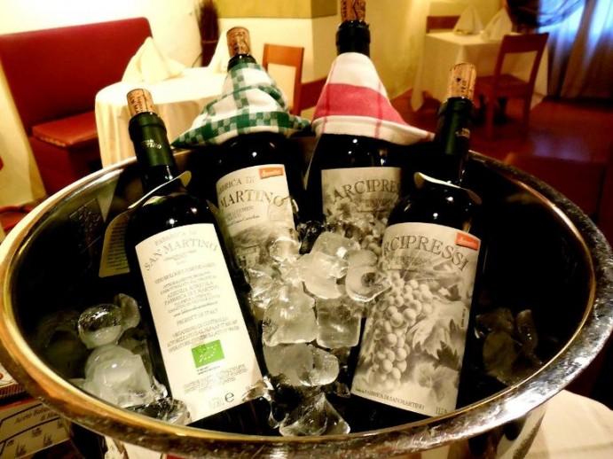 Vigna Ilaria, i vini