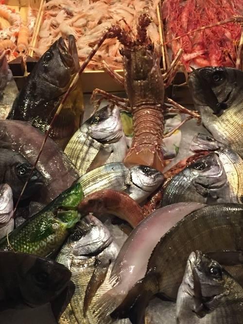 Vucciria, pesci