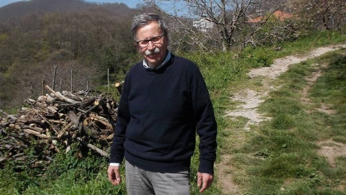 Alfonso Arpino