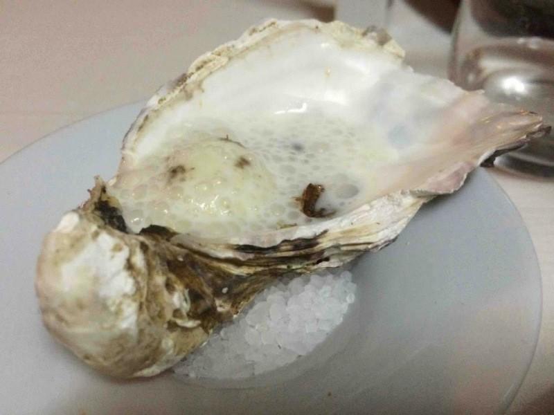 Essenza, l'ostrica finta