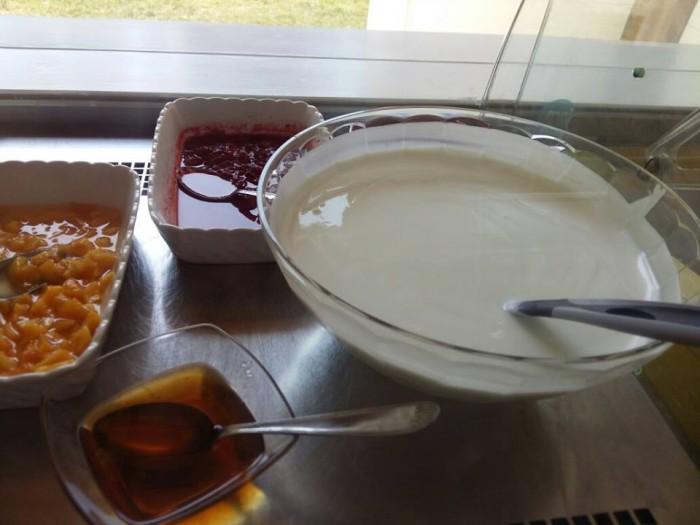 Fattoria Cavallo, yogurt con latte di capra e confetture