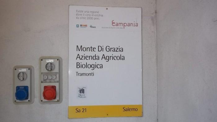 Monte di Grazia, logo aziendale