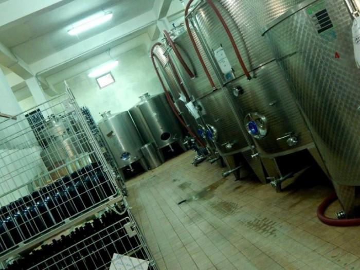 Petilia, cantina-zona vinificazione