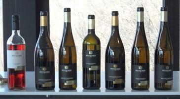 Pfischer, i vini