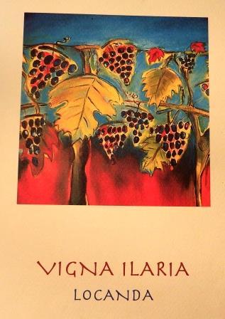 Vigna Ilaria