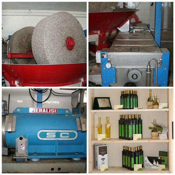 Cannito, frantoio molazze metodo tradizionale, estrazione continua dell'extravergine, frantoio gramolatrice refrigerata e gli oli