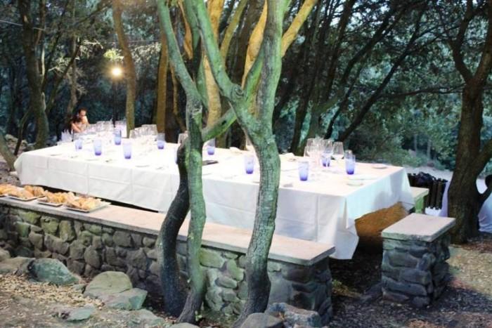 Cose buone nel bosco, la tavola