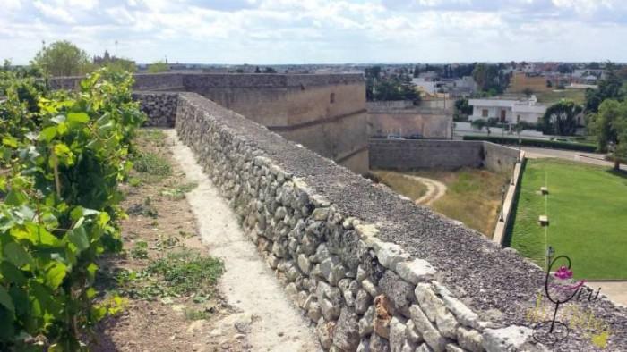 Cupertinum, il vigneto, i bastioni e il fossato