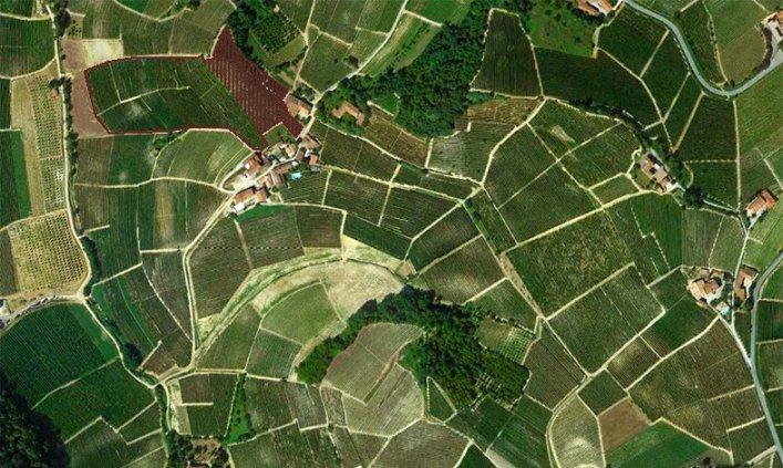 Poderi Aldo Conterno, la parte della vigna Colonnello (in rosso) all'interno della Bussia