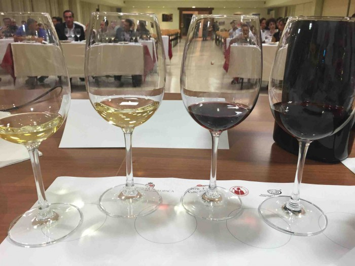 Solopaca classico, i vini