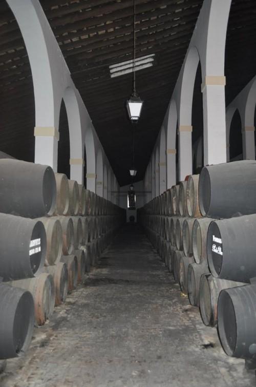 Jerez de la Frontera, l'infinito affinamento dello sherry