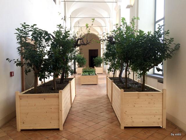Magna. La mostra a San Domenico Maggiore gli orti di Napoli