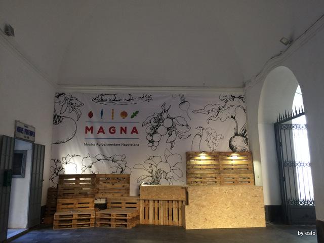 Magna. La mostra a San  Domenico Maggiore