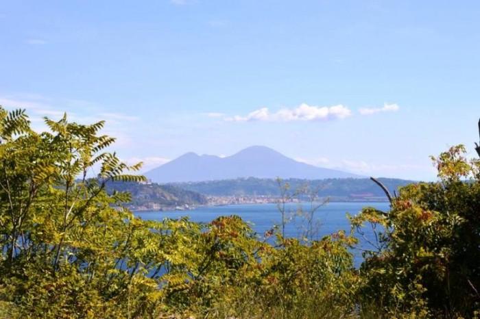 il Vesuvio dai Campi Flegrei
