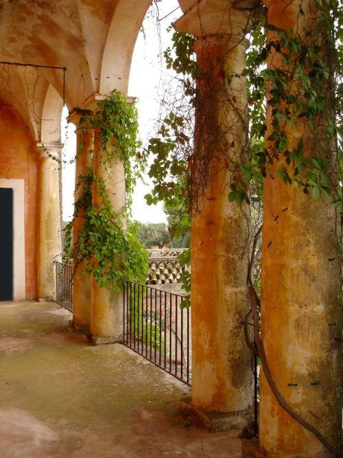 Cerfeda dell'Elba, la masseria